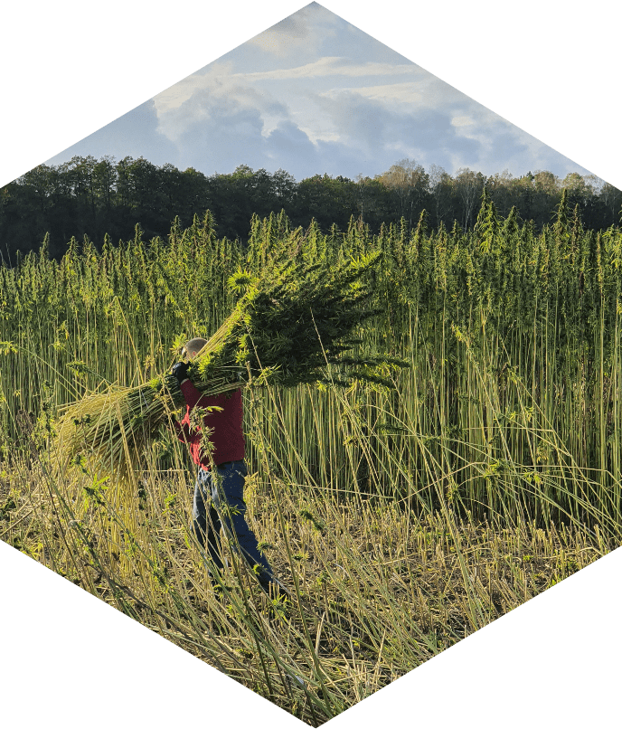 Den Hollander Farms